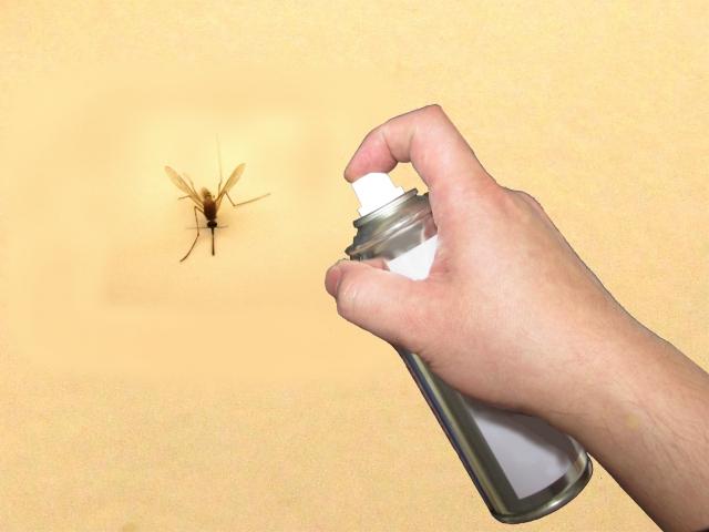 最新!蚊を駆除するのに効果的な駆除グッズをご紹介!