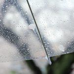 上野ハロウィン2018は雨でも開催?雨天時は中止?台風や東京の天気予報に注意