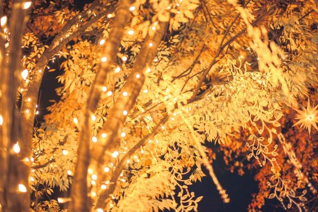 クリスマスイルミネーション千葉でインスタ映えする場所、撮り方は?