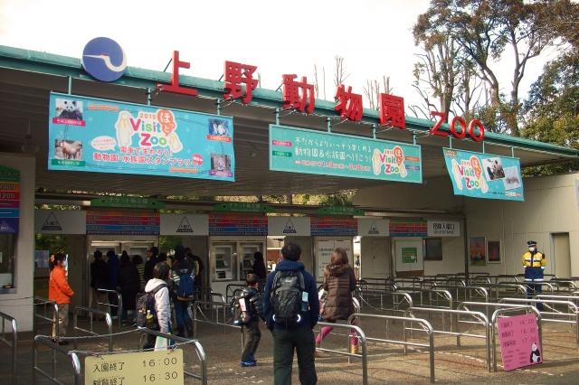 上野動物園の混雑やパンダ、シャンシャン、モノレール、駐車場の待ち時間