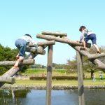 清水公園の混雑やキャンプ場、バーベキュー、プール、アスレチックの楽しみ方